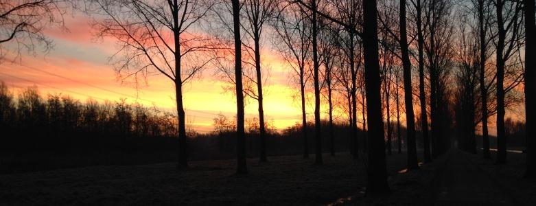 5 tekenen dat de lente eraan komt zonsopkomst - GuashaTherapeut.nl